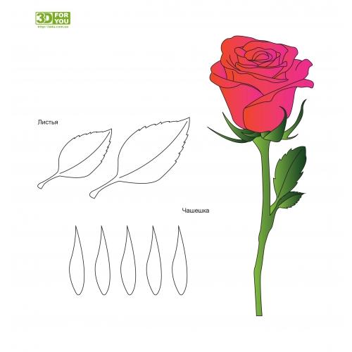 Роза(трафарет для 3D ручки)